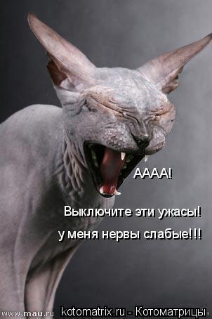 Котоматрица: АААА!  Выключите эти ужасы! у меня нервы слабые!!!