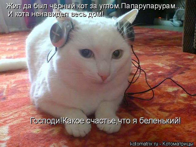 Котоматрица: Жил да был чёрный кот за углом.Папарупарурам.... И кота ненавидел весь дом! Господи!Какое счастье,что я беленький!