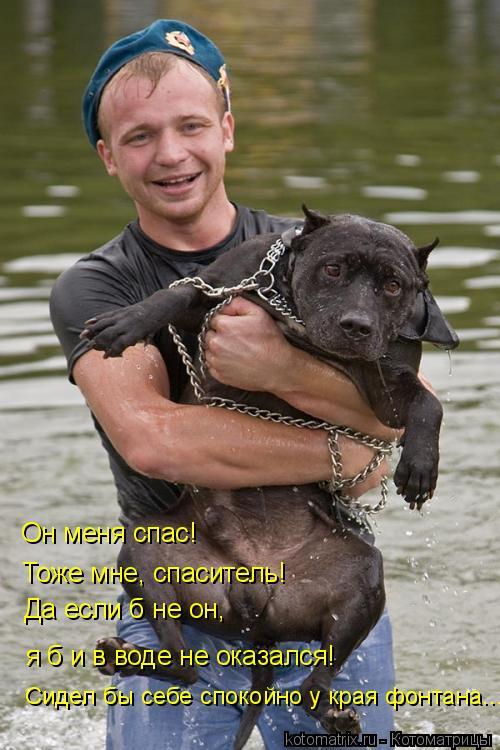 Котоматрица: Он меня спас! Тоже мне, спаситель! я б и в воде не оказался! Да если б не он, Сидел бы себе спокойно у края фонтана...