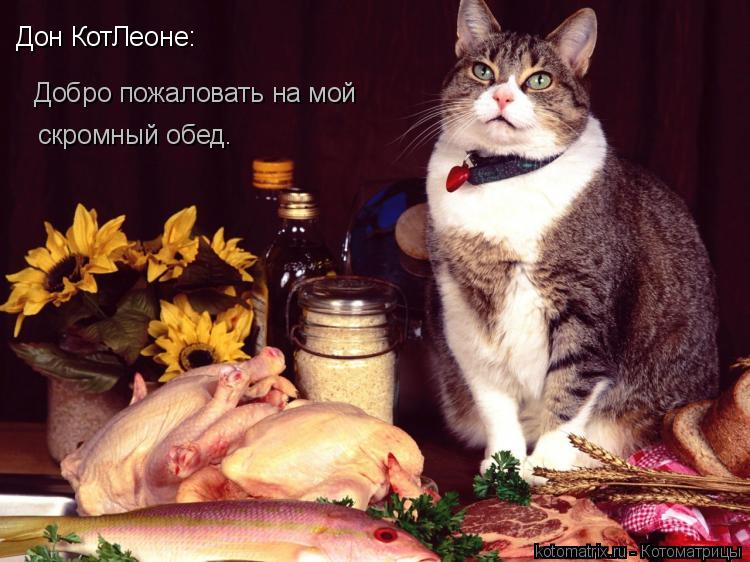 Котоматрица: Дон КотЛеоне: Добро пожаловать на мой скромный обед.