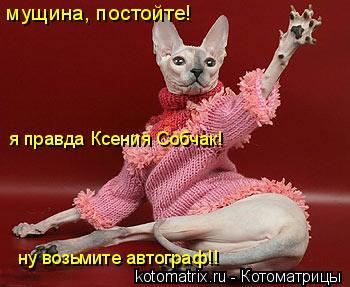 Котоматрица: мущина, постойте! я правда Ксения Собчак! ну возьмите автограф!!