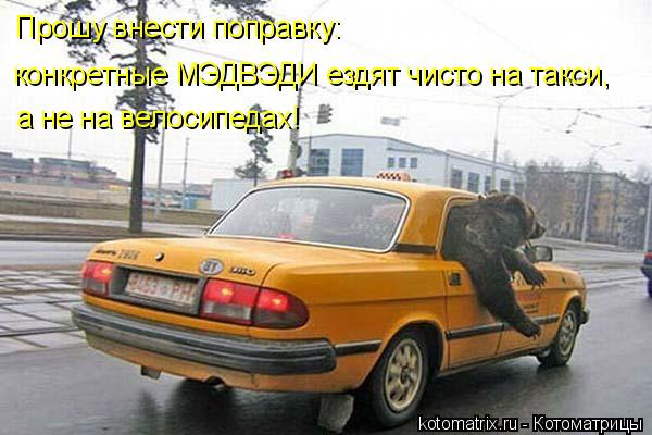 Котоматрица: Прошу внести поправку: конкретные МЭДВЭДИ ездят чисто на такси, а не на велосипедах!