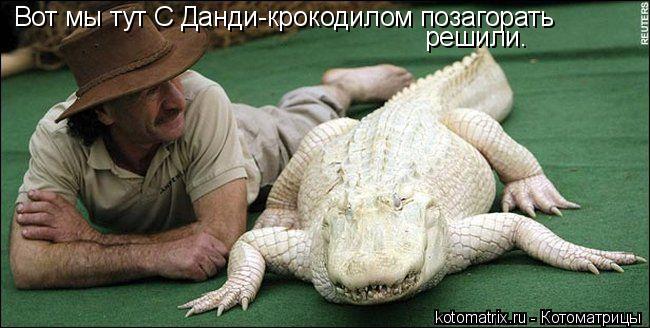 Котоматрица: Вот мы тут С Данди-крокодилом позагорать решили.