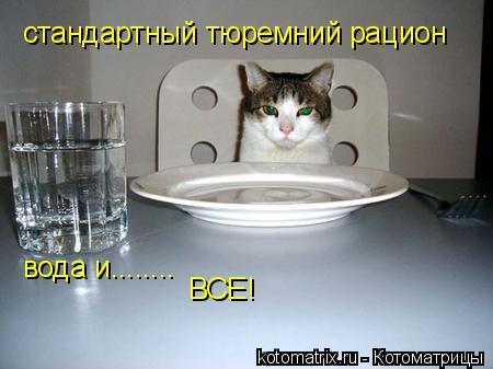 Котоматрица: стандартный тюремний рацион вода и........ ВСЕ!
