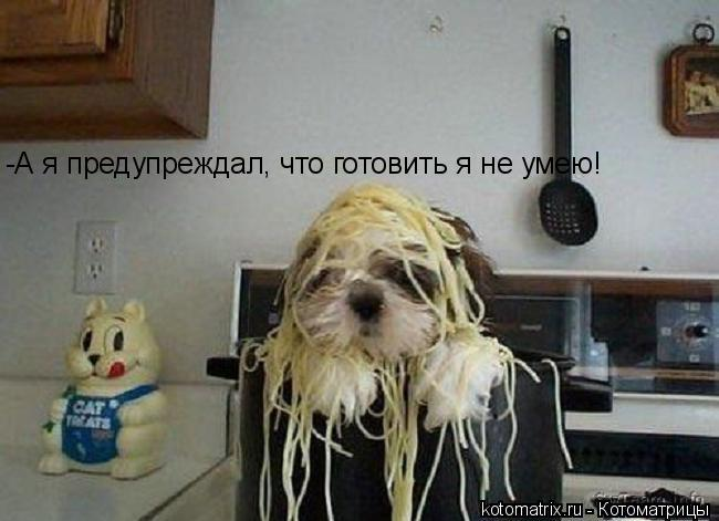 Котоматрица: -А я предупреждал, что готовить я не умею!
