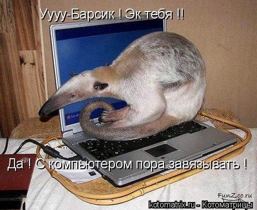Котоматрица: Уууу-Барсик ! Эк тебя !!  Да ! С компьютером пора завязывать !