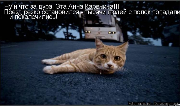 Котоматрица: Ну и что за дура, Эта Анна Каренина!!! Поезд резко остановился - тысячи людей с полок попадали и покалечились!