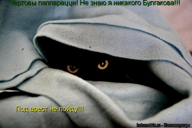 Котоматрица: Чертовы паппарацци! Не знаю я никакого Булгакова!!! Под арест не пойду!!!