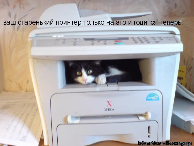 Котоматрица: ваш старенький принтер только на это и годится теперь.