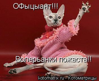 Котоматрица: ОФыцыант!!! Волерьанки пожаста!!