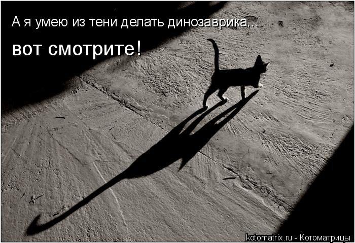 Котоматрица: А я умею из тени делать динозаврика... вот смотрите!