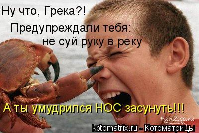 Котоматрица: Ну что, Грека?! Предупреждали тебя:  не суй руку в реку А ты умудрился НОС засунуть!!!