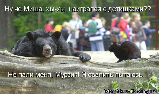 Котоматрица: Не пали меня, Мурзик! Я свалить пытаюсь... Ну че Миша, хы-хы, наигрался с детишками??