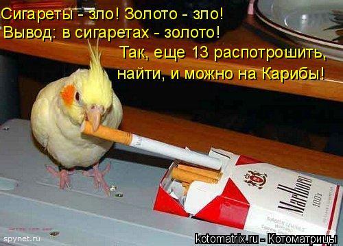Котоматрица: Сигареты - зло! Золото - зло! Вывод: в сигаретах - золото! Так, еще 13 распотрошить, найти, и можно на Карибы!
