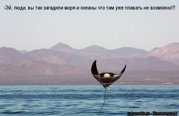 Котоматрица: -Эй, люди, вы так загадили моря и океаны что там уже плавать не возможно!!!