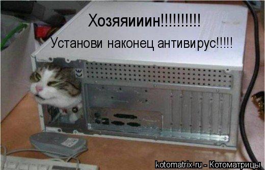 Котоматрица: Хозяяииин!!!!!!!!!! Установи наконец антивирус!!!!!