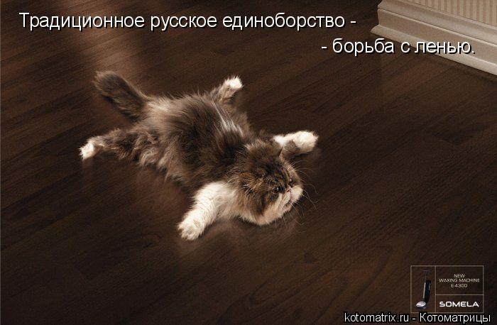 Котоматрица: Традиционное русское единоборство -   - борьба с ленью.