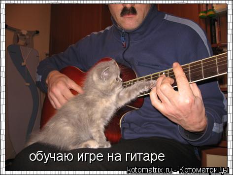 Котоматрица: обучаю игре на гитаре