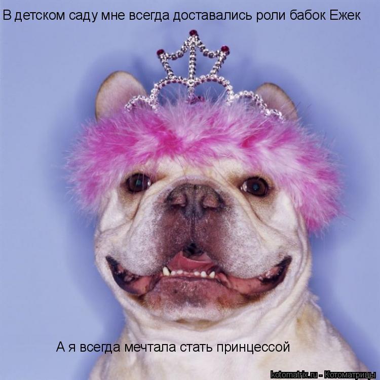 Котоматрица: В детском саду мне всегда доставались роли бабок Ежек А я всегда мечтала стать принцессой
