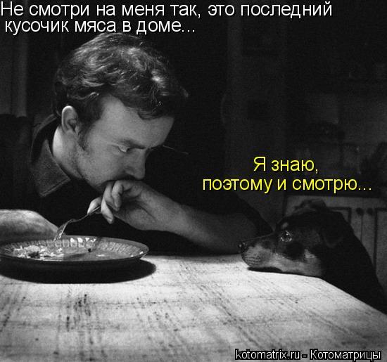 Котоматрица: Не смотри на меня так, это последний  кусочик мяса в доме... Я знаю,  поэтому и смотрю...