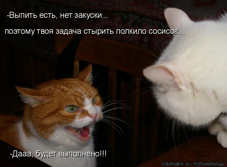 Котоматрица: -Выпить есть, нет закуски... поэтому твоя задача стырить полкило сосисок... -Дааа, будет выполнено!!!