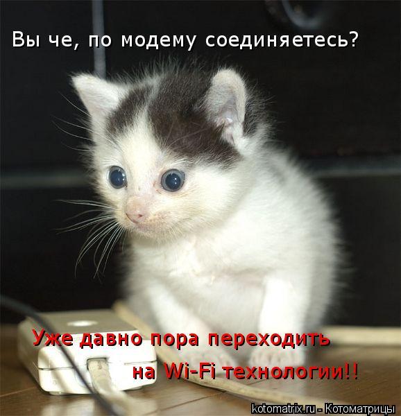 Котоматрица: Вы че, по модему соединяетесь? Уже давно пора переходить  на Wi-Fi технологии!!