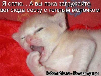 Котоматрица: Я сплю... А вы пока загружайте  вот сюда соску с теплым молочком