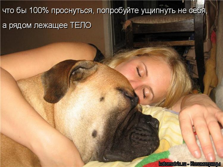 Котоматрица: что бы 100% проснуться, попробуйте ущипнуть не себя, а рядом лежащее ТЕЛО