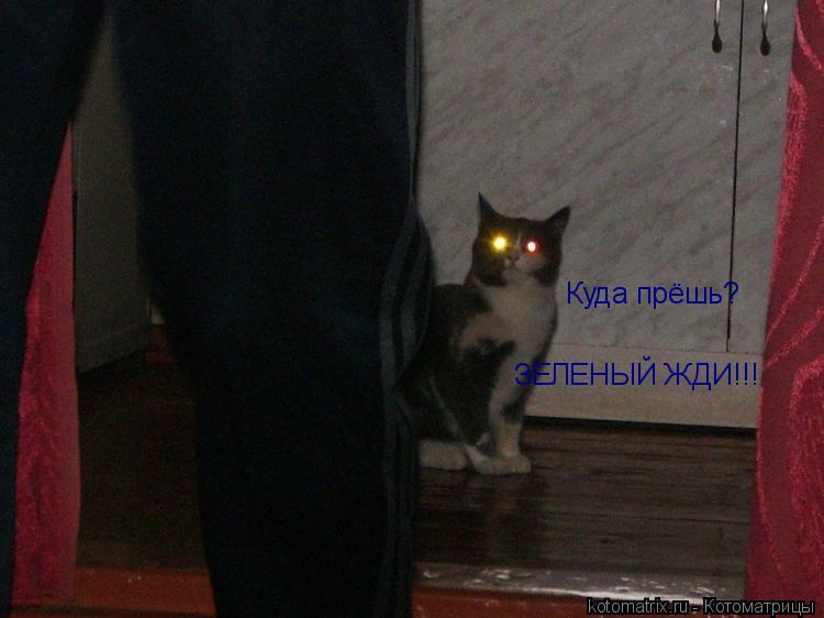 http://kotomatrix.ru/images/lolz/2008/08/06/oX.jpg