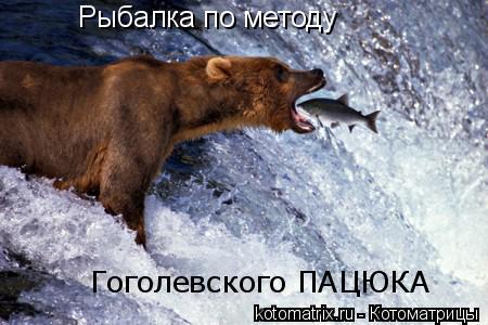 Котоматрица: Рыбалка по методу Гоголевского ПАЦЮКА