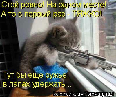 Котоматрица: Стой ровно! На одном месте! А то в первый раз - ТЯЖКО! Тут бы еще ружье  в лапах удержать...