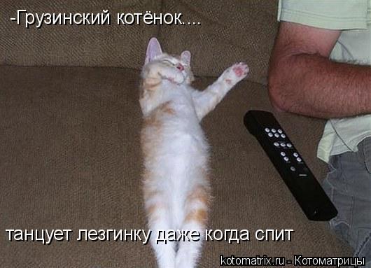 Котоматрица: -Грузинский котёнок.... танцует лезгинку даже когда спит