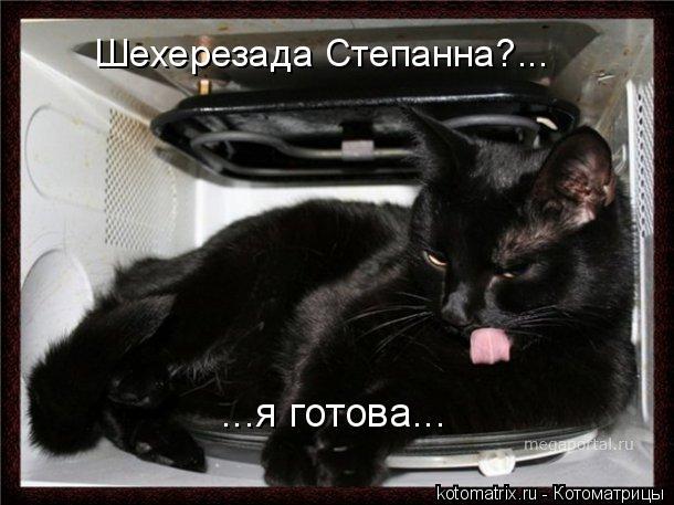 Котоматрица: Шехерезада Степанна?... ...я готова...