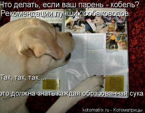 Котоматрица: Что делать, если ваш парень - кобель?  Рекомендации лучших собаководов. Так, так, так....  это должна знать каждая образованная сука