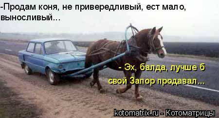Котоматрица: -Продам коня, не привередливый, ест мало, выносливый... - Эх, балда, лучше б свой Запор продавал...