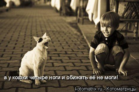 Котоматрица: а у кошки четыре ноги и обижать её не моги!