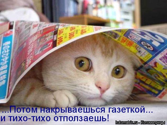 http://kotomatrix.ru/images/lolz/2008/08/08/H9.jpg