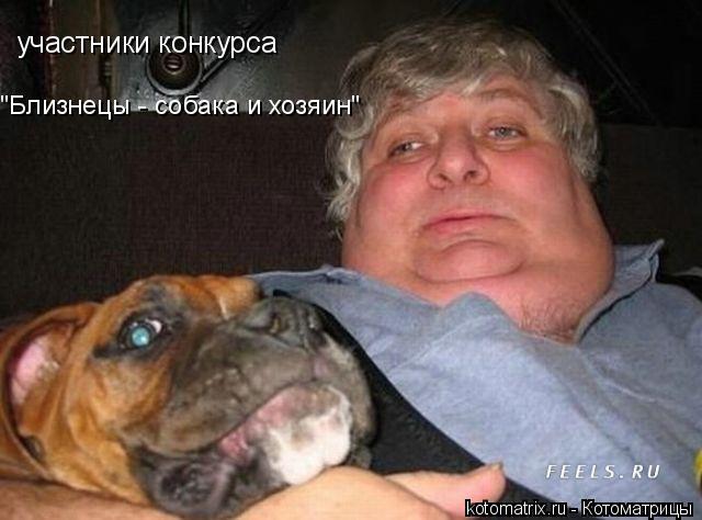 "Котоматрица: участники конкурса  ""Близнецы - собака и хозяин"""