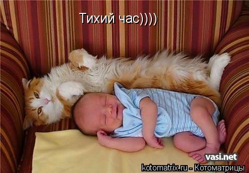 Котоматрица: Тихий час))))
