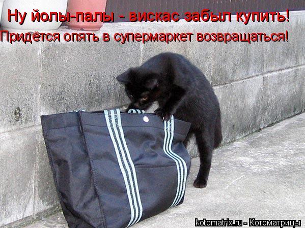 Котоматрица: Ну йолы-палы - вискас забыл купить! Придётся опять в супермаркет возвращаться!