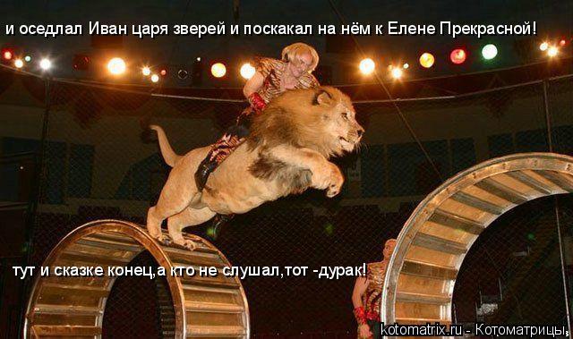 Котоматрица: и оседлал Иван царя зверей и поскакал на нём к Елене Прекрасной! тут и сказке конец,а кто не слушал,тот -дурак!