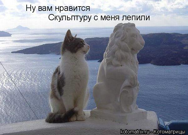 Котоматрица: Ну вам нравится Скульптуру с меня лепили
