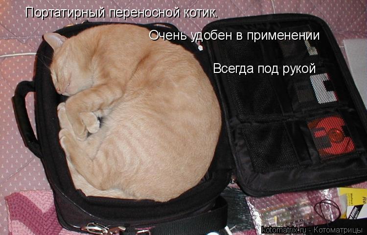 Котоматрица: Портатирный переносной котик.  Очень удобен в применении Всегда под рукой