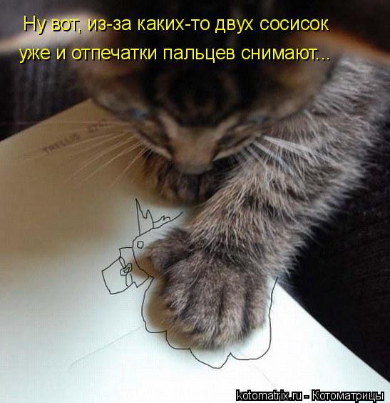 Котоматрица: Ну вот, из-за каких-то двух сосисок уже и отпечатки пальцев снимают...