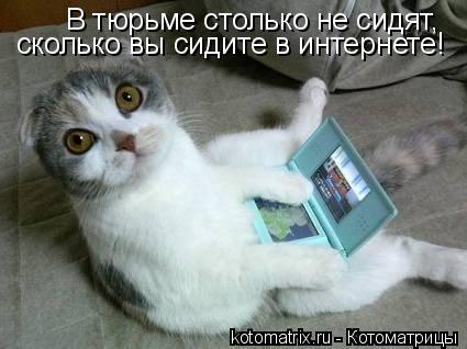 Котоматрица: В тюрьме столько не сидят, сколько вы сидите в интернете!
