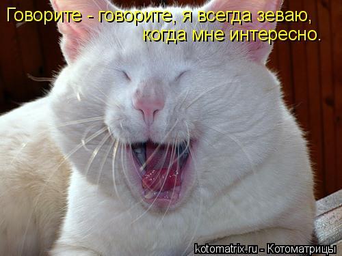 Котоматрица: Говорите - говорите, я всегда зеваю,  когда мне интересно.
