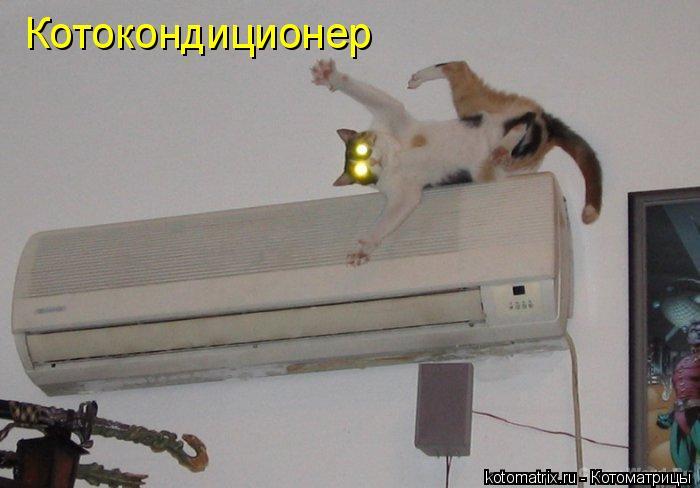 Котоматрица: Котокондиционер