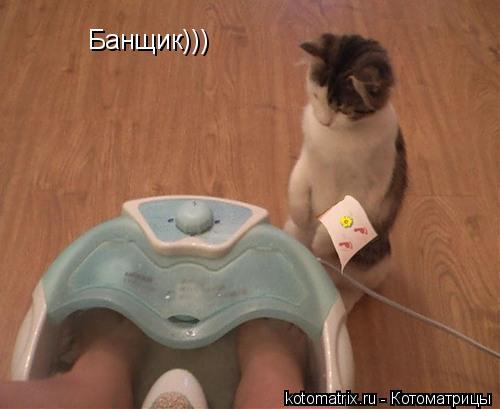 Котоматрица: Банщик)))