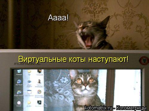 Котоматрица: Аааа! Виртуальные коты наступают!