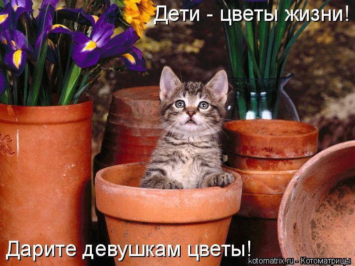 Котоматрица: Дети - цветы жизни! Дарите девушкам цветы!